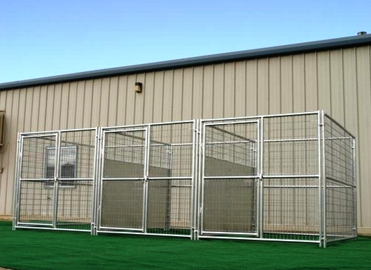 Heavy Duty 3 Run Dog Kennel 6 X8 X6 W Fight Guard Dividers