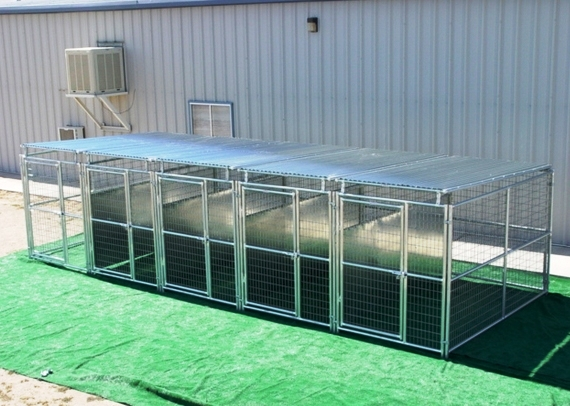 Heavy Duty 5 Run Dog Kennel 5 X10 W Fight Guard Roof