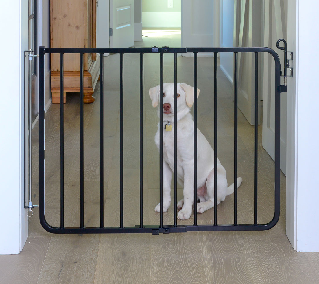 auto lock pet safety gate mg 15 by cardinal. Black Bedroom Furniture Sets. Home Design Ideas