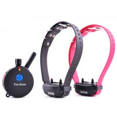 The Boss 2 Dog 1 Mile Big Dog Remote Training Collar