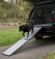 Feather-Lite Pet Ramp by Gen7Pets for Good Dog Health