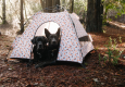 Designer Dog Tent offers UV Protection Portability and More
