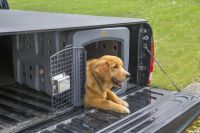 Dakota 283 T1 Low Profile Dog Kennel | Carry My Dog