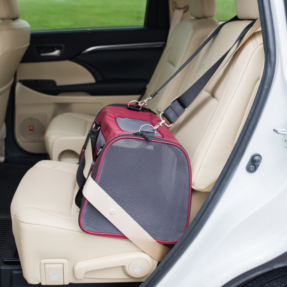 Gen7 Commuter Pet Carrier Amp Car Seat For Special Dogs