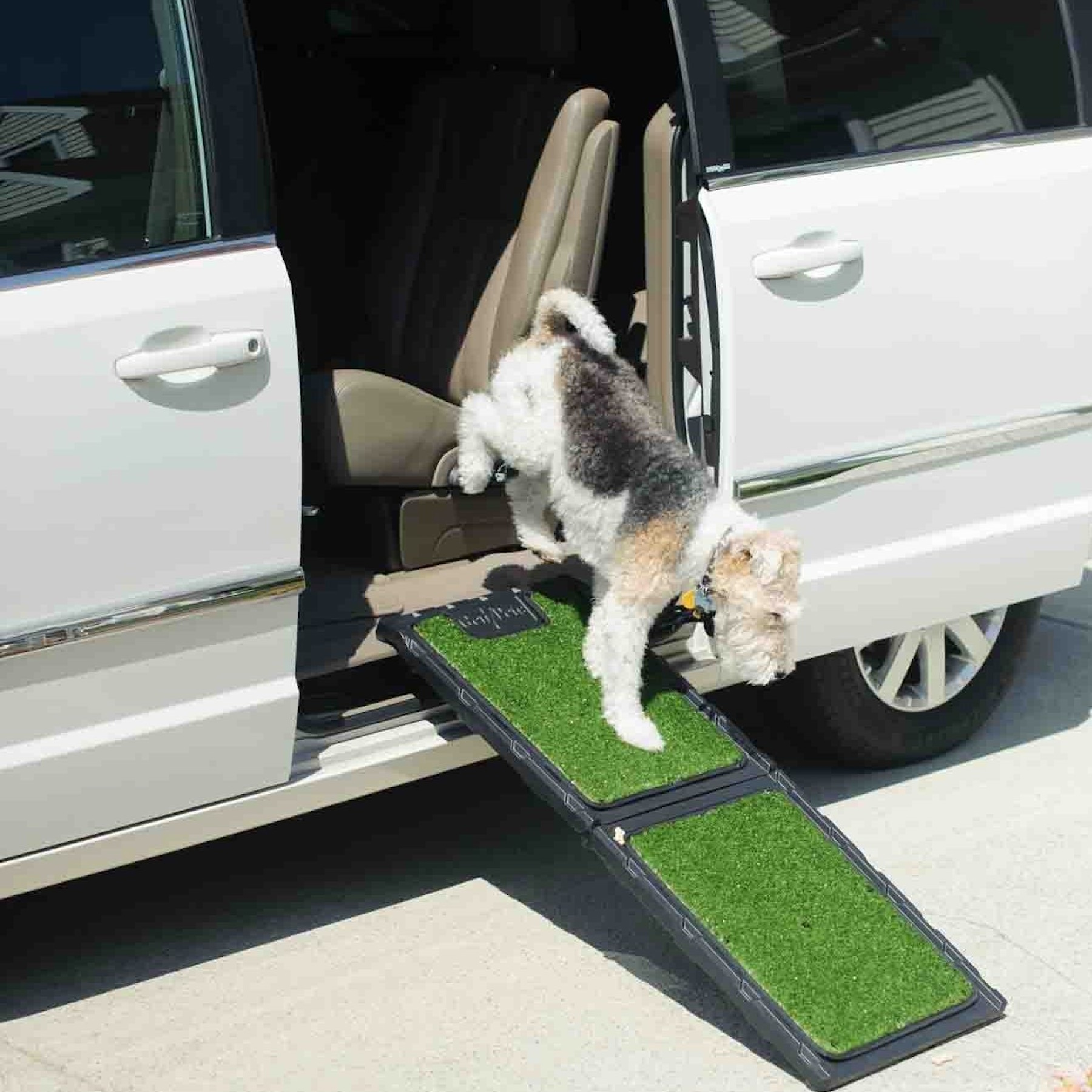 Pet Ramp For Car >> Natural-Step™ Pet Ramp with Poly Grass for Dog Comfort