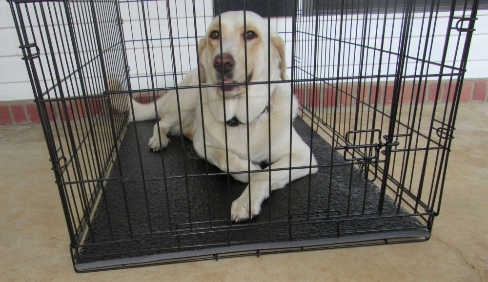 Dig Proof Heavy Duty Dog Crate pad