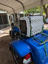Ruff Tough kennel from carrymydog.com on 3 wheel bike