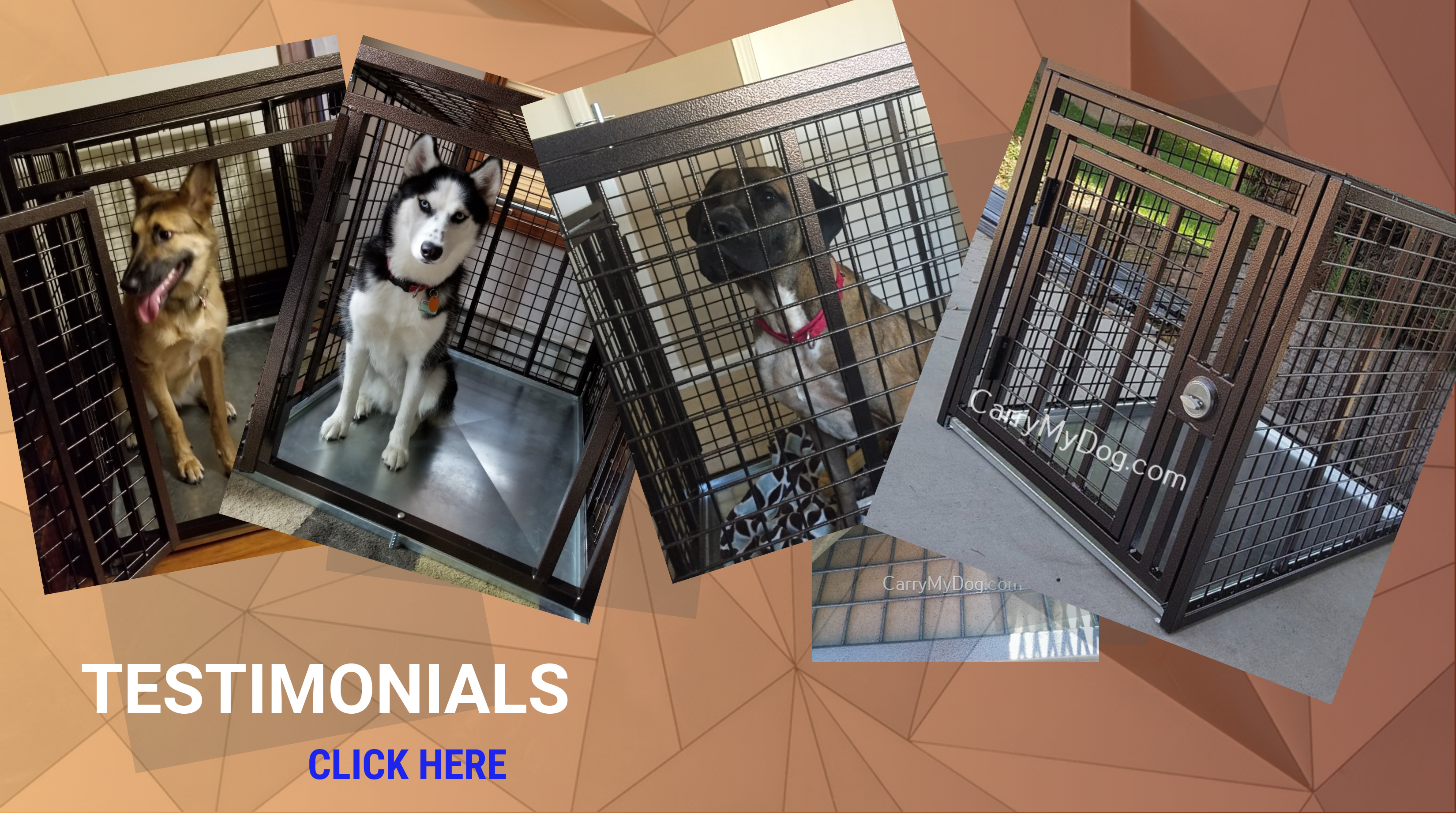 Testimonials for Xtreme heavy duty dog crates sold exclusively by carrymydog.com