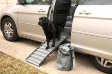 Latest Technology in Dog Ramps from Ramp4Paws (SELECT RAMP4PAWS SIZE: SMALL)