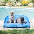 The Cool-Air Dog Cot An Outside Dog Bed to Use Anywhere