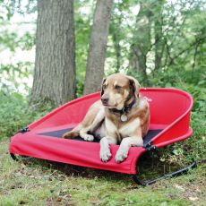 The Cool-Air Dog Cot An Outside Dog Bed to Use Anywhere (SELECT COT SIZE: MEDIUM)