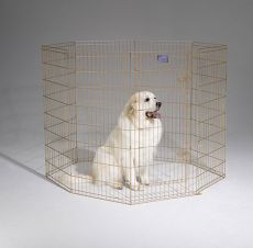 "Gold Zinc Pet Exercise Pen - Steel Construction (SELECT GOLD ZINC PEN SIZE: SMALL  24""W x 24""H Panels)"
