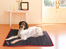 "Softplace Dog Crate Mats Strong Luxurious Durable Washable (Select Size Option: X-Large  39.37W X 47.24""L)"